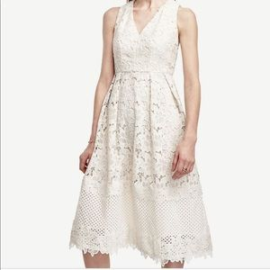 Ann Taylor ivory floral lace dress